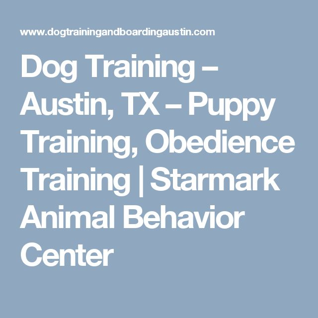 Dog Training – Austin, TX – Puppy Training, Obedience Training   Starmark Animal Behavior Center