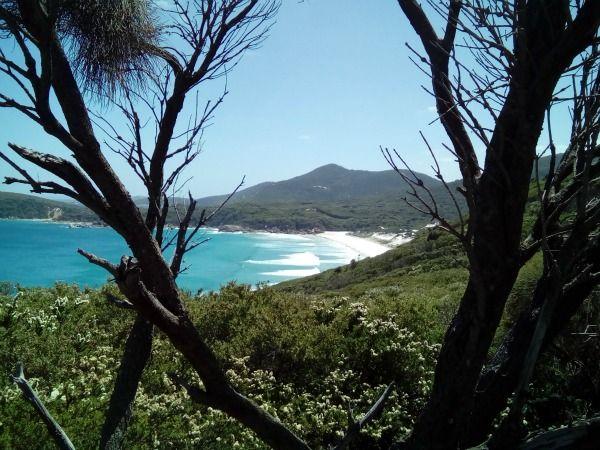 Wilsons Promontory Victoria Australia