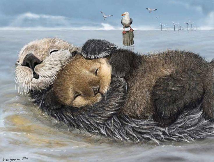 » Blair Sampson. Хорошенькие картинки со зверятами » Картинки, эскизы, рисунки карандашом и тушью.