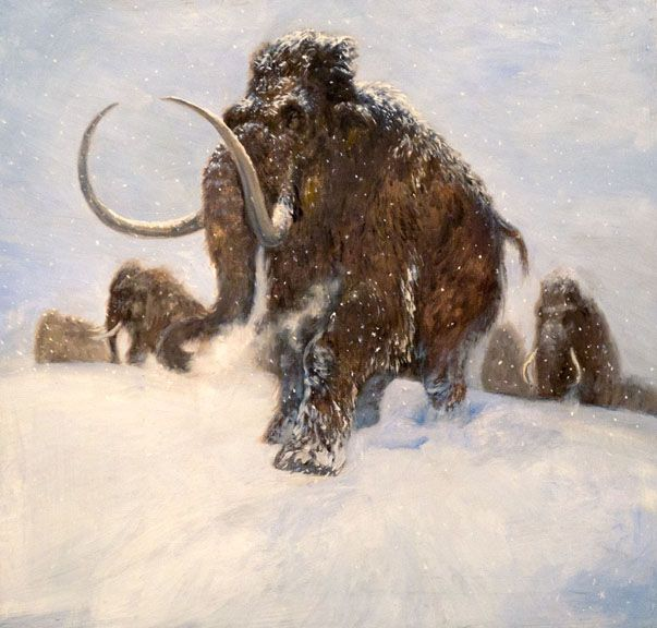 Why we shouldn't bring back the mammoth and other extinct animals