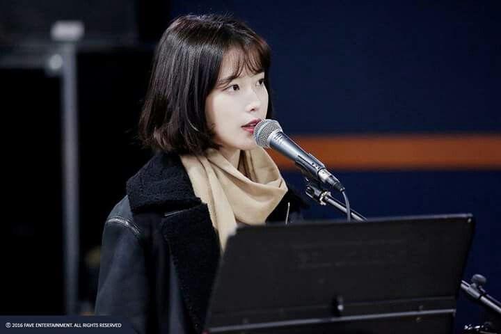 IU 24 Steps Concert Fan Cafe Up date