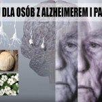 4 potężne zioła regenerujące mózg – wskazówki dla osób z alzheimerem i parkinsonem | Szkolenia dietetyczne