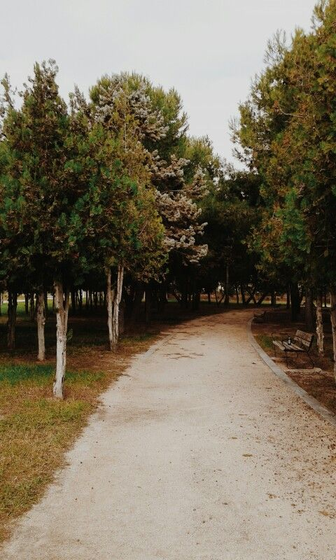 Melancholia path