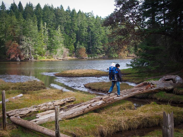 Witty's Lagoon. Great hiking for toddlers, warm water beach, good kite flying. Easy access from downtown Victoria, BC!