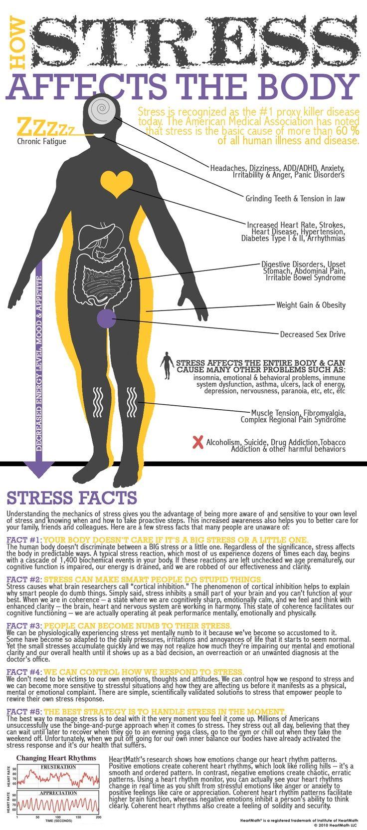 How stress affects the body. Follow us @ http://pinterest.com/stylecraze/health-and-wellness/  for more updates.