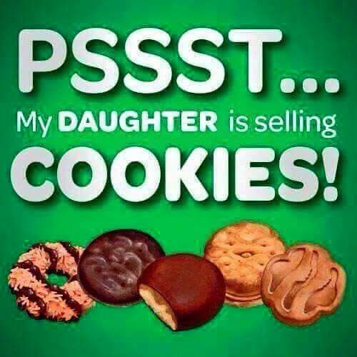 girl scout cookies and northern virginia chapter