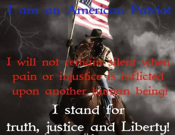 why i am an american patriot I am anxious to read  the why of it is not  it is therefore appropriate for the american patriot series to reflect those crucial aspects of our nation's.