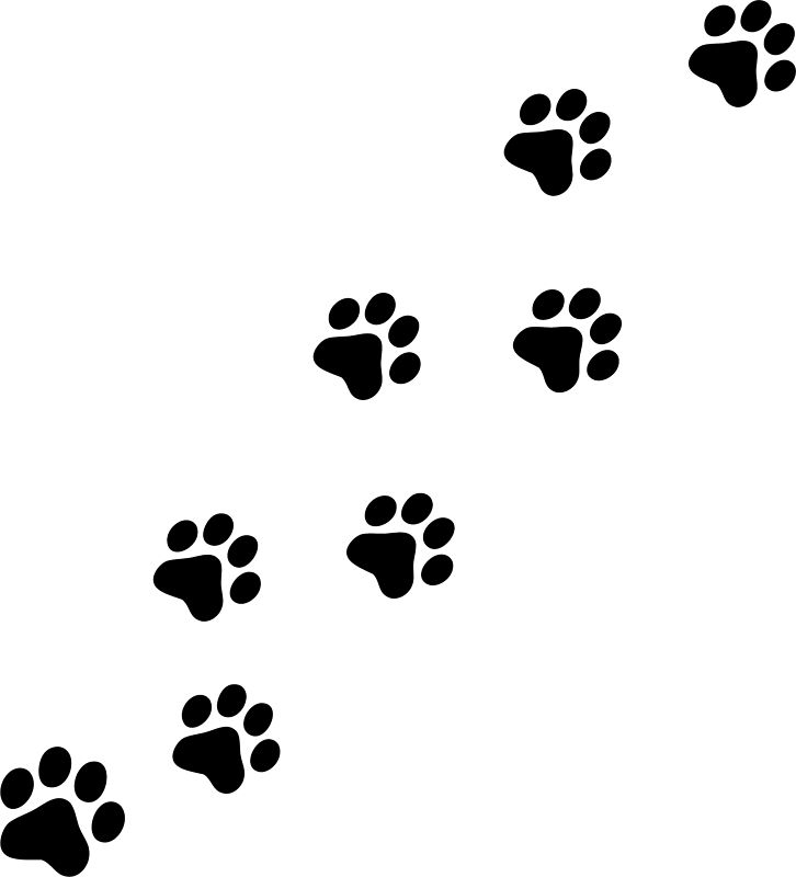 picture of a panther paw print clipart image 1189