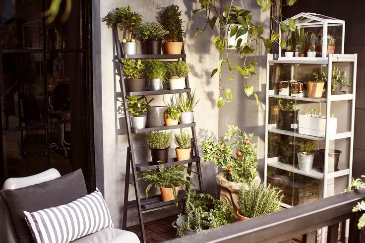 Maak slim gebruik van je muur en werk de hoogte in met een plantenrek…
