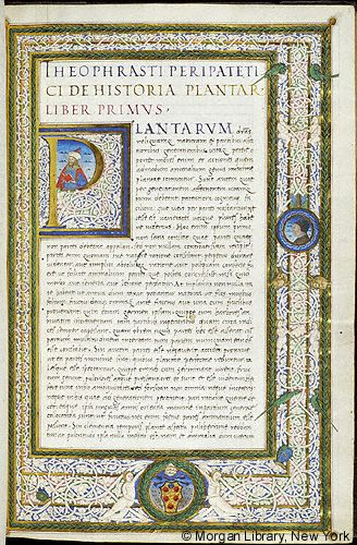 De historia plantarum et De causis plantarum, Italy, 1523-1534, MS M.118 fol. 5r - Images from Medieval and Renaissance Manuscripts - The Morgan Library & Museum