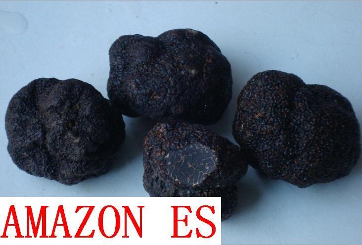 Kaufen pilz Trüffel und Pu Erh Tee online zum Verkauf