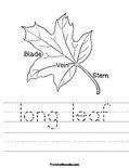 long leaf Worksheet