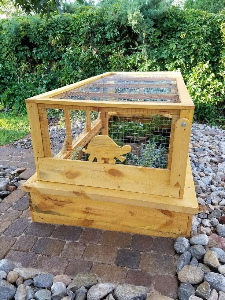 Outdoor habitat for Ornate and Desert Box Turtles.  Predator proof Easy access hinged screen dome
