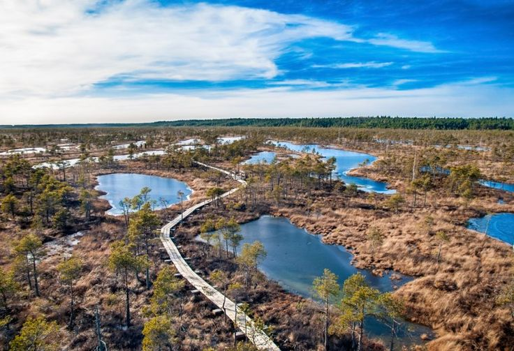 Ķemeri National Park, Latvia