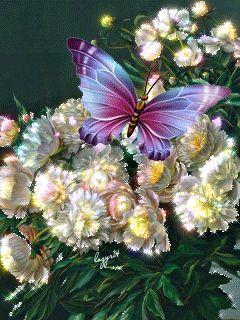 Imagenes+Bonitas+Con+Movimiento+De+Flores+Con+Una+Mariposa