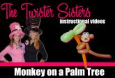 Video Tutorials | The Twister Sisters - San Antonio Balloon Artists