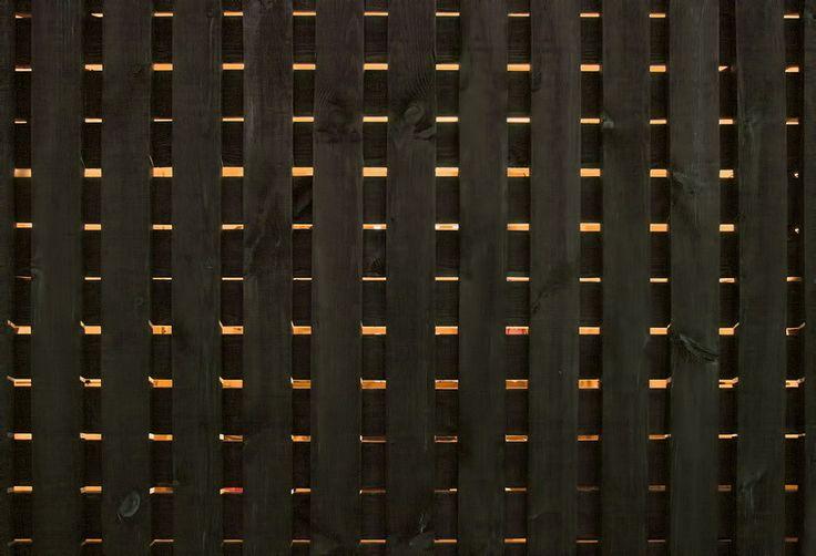 Galería de Shed / NARTARCHITECTS - 12