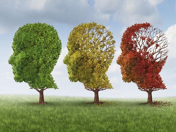 Cervello: i segnali del decadimento. Ecco come si manifestano!