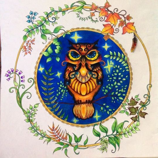 1000 Images About Enchanted Forest Colorbook On Pinterest