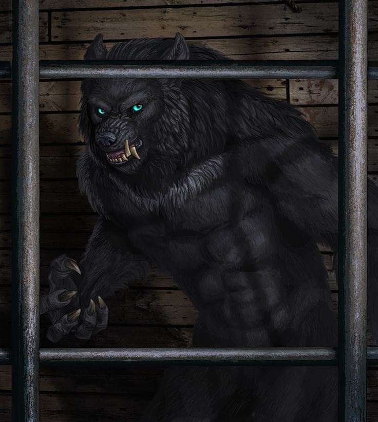 Werewolves Shifters: DeviantART And Werewolves On Pinterest