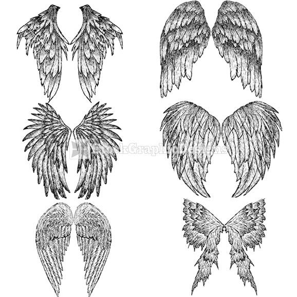 how to draw feathered wings | Hand Drawn Wings Vector ...
