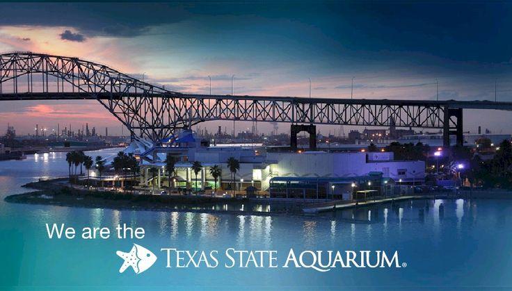 Texas State Aquarium Corpus Christi Texas Pinterest