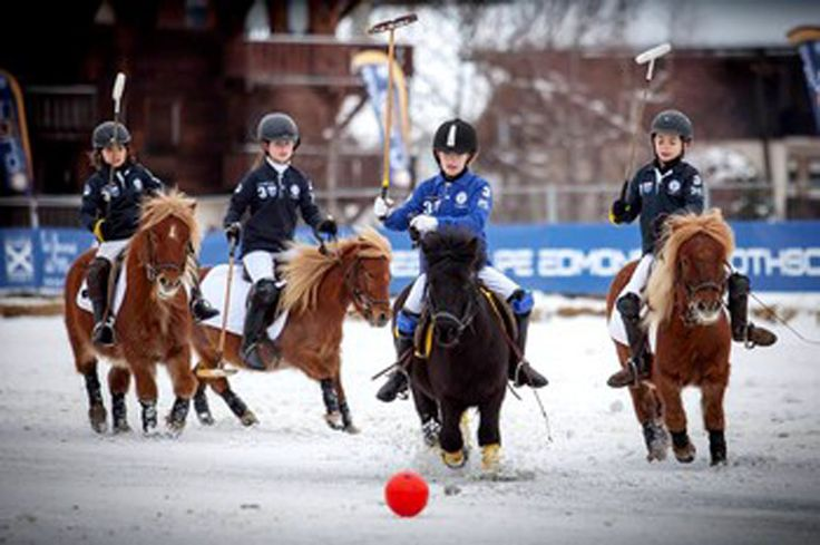 Polo is made for everyone!