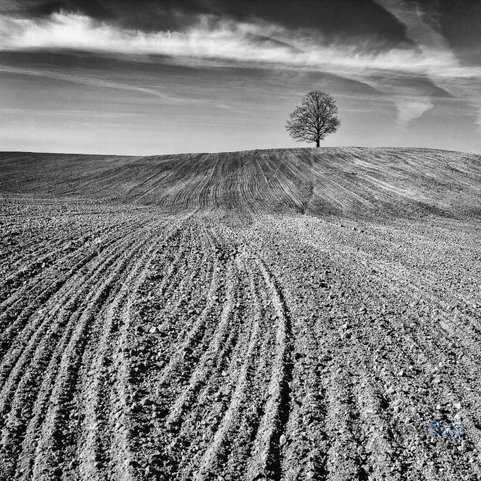 My photo received an award on ViewBug, a photo contest community!.
