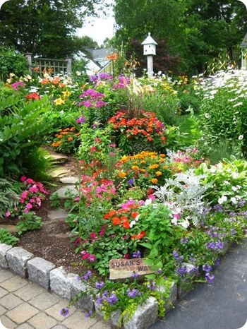 Colourful corner flower patch