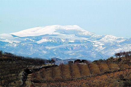 El MONCAYO es una montaña del Sistema Ibérico. Con sus 2.314,30 msnm, es la máxima cumbre del Sistema Ibérico y uno de los picos más relevantes de la Península Ibérica.