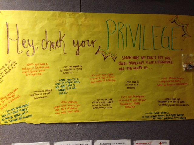 """Nemerov 1&2 RA passive program for Diversity & Inclusion -- """"Check Your Privilege"""". Students place push pins on statements that apply to their dominant identities."""
