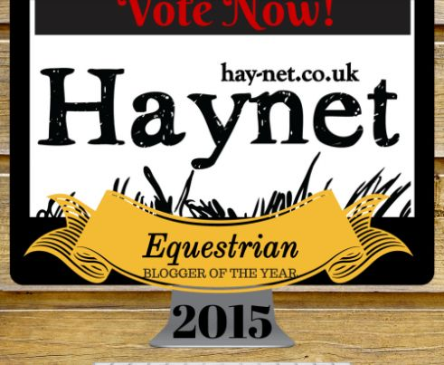 haynet-equestrian-blogger-of-the-year-2015