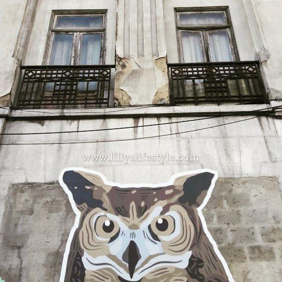 #streetart #arteurbana #graffiti #murales #artedistrada #urbanart #streetartist #urbanartist #marzolisbona #eventilisbona2018  #lisbona #portugal #visitlisboa #visitportugal #viverealisbona #italianialisbona #vivereinportogallo #portogallo #alisbonaconlilly #lisbon #lisboa #lisbonne #lisbonacuriosa #lisbonanonturistica #lisbonsecret #vacanzalisbona #sharelisboa #lillyslifestyle #segretidilisbona