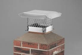"""Flue; Google Definition is """"a duct for smoke and waste gases produced by a fire, a gas heater, a power station, or other fuel-burning installation."""" Text Example: """"They  went off to the  air  closet, where a wind sucked them like brown leaves up the flue to their slumber rooms."""" (Page 4) My Sentence is: The flue in the chimney is damaged."""
