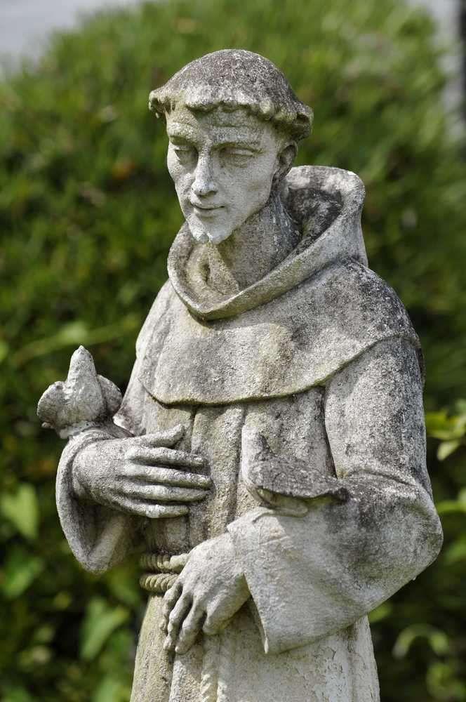 31 Best St Francis Images On Pinterest Saint Francis