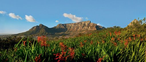 Table-Mountain, Cape Town, South Africa