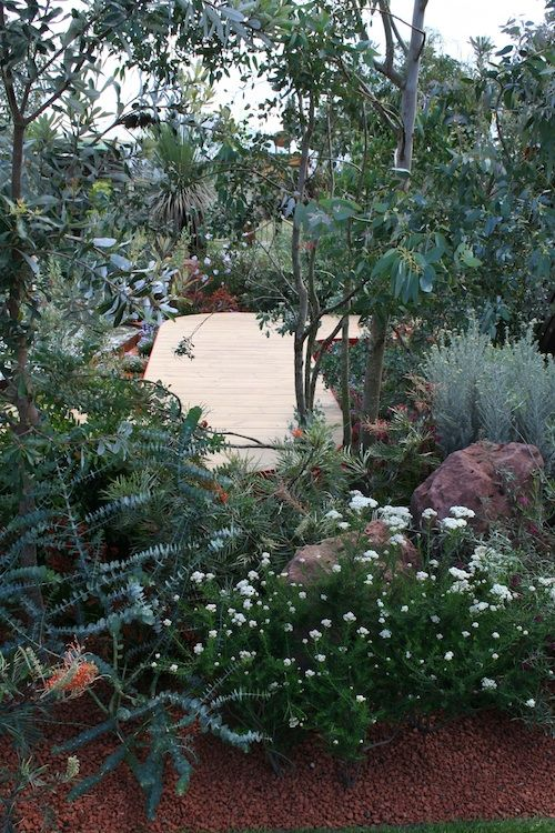 25 best ideas about australian native garden on pinterest small front garden ideas australia