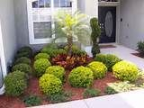 plant ideas small front yard - Yahoo Canada Search Results