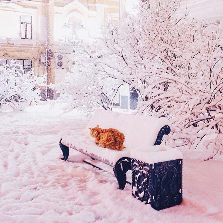 зима стильные картинки ночь