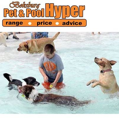 What pool fun do you have planned over the weekend? Pop in at Pet & Pool Hyper Boksburg for great pool products and advice for keeping your pool sparkle clean. #pool #swimmingpool