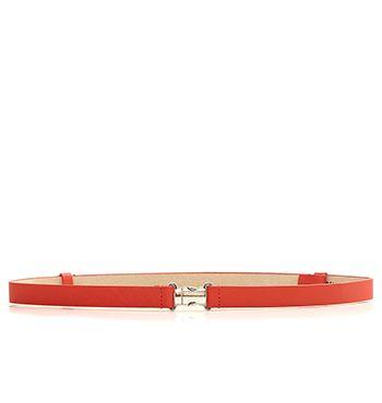 Clip Belt