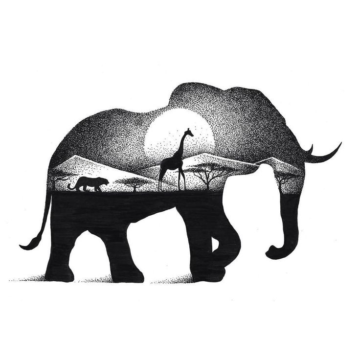 Black And White Indian Elephant Drawing
