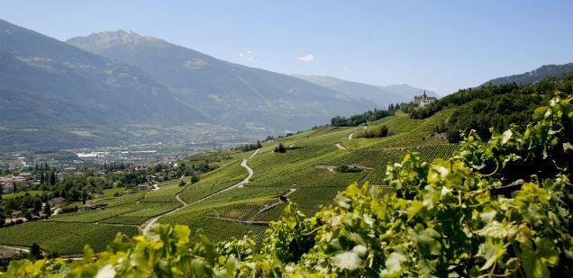 Tourismusbüro Aktivitäten Sommer Winter Wein :: Siders Wallis Schweiz