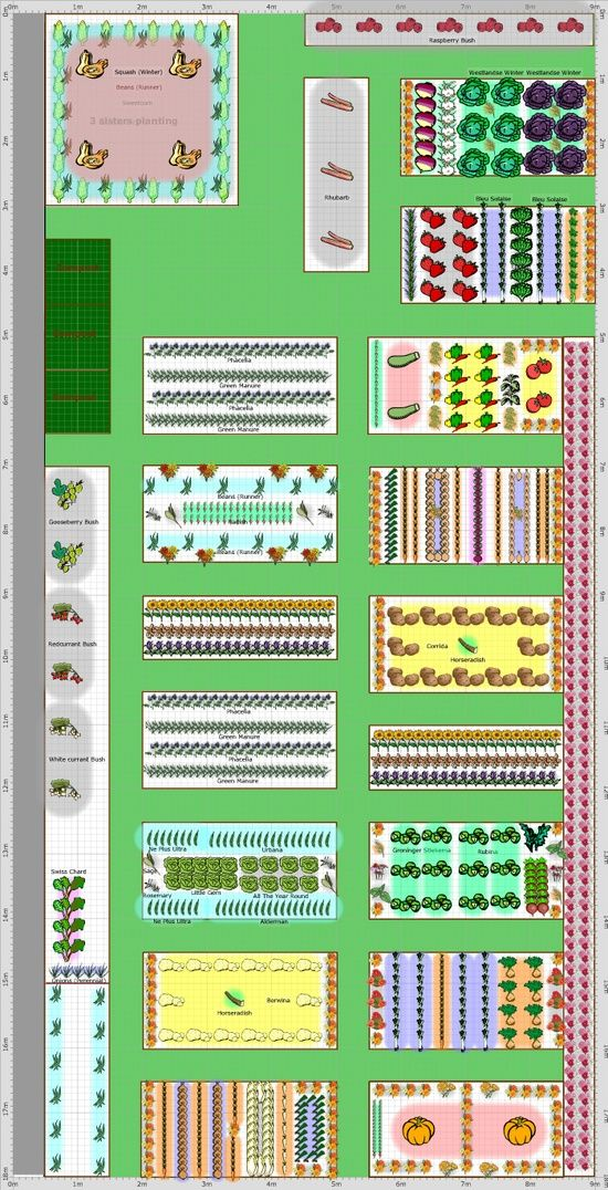Garden Plan - 2013: Vegetable garden