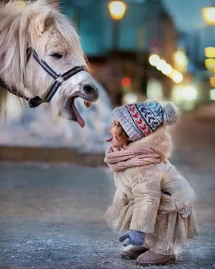 Découvrez et partagez les plus belles images au monde