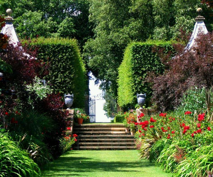 Beautiful Yellow Flowers Garden · Garden TipsHome And ...