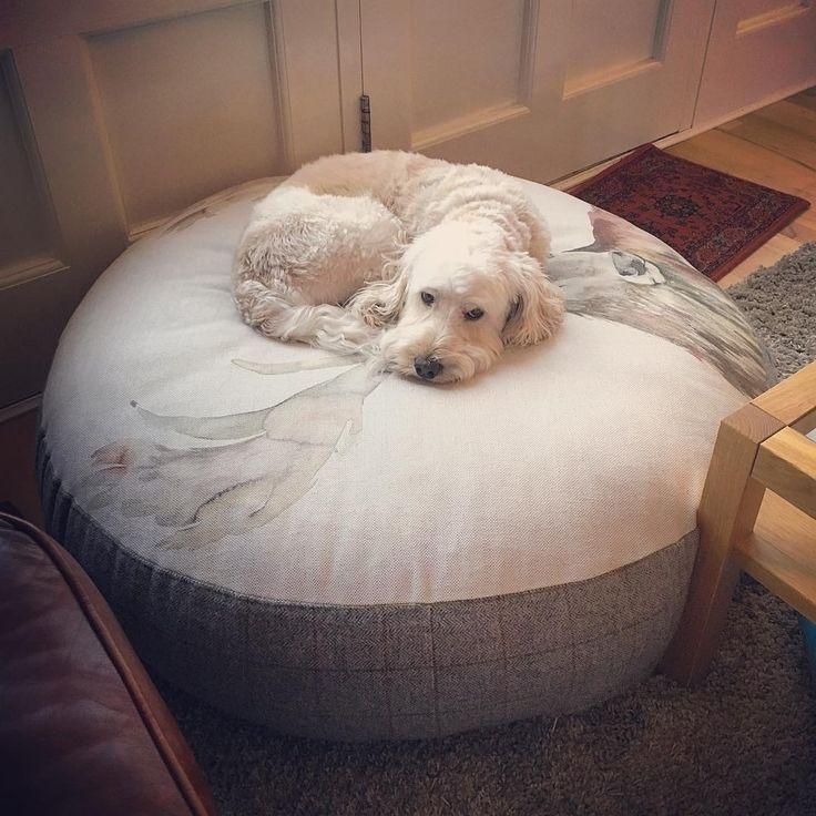 С пуфов #voyagemaison не хочется вставать... @emmapppppppp #fabric #dog #собака #ткани #пуф #decoration #interior #собаки #galleria_arben