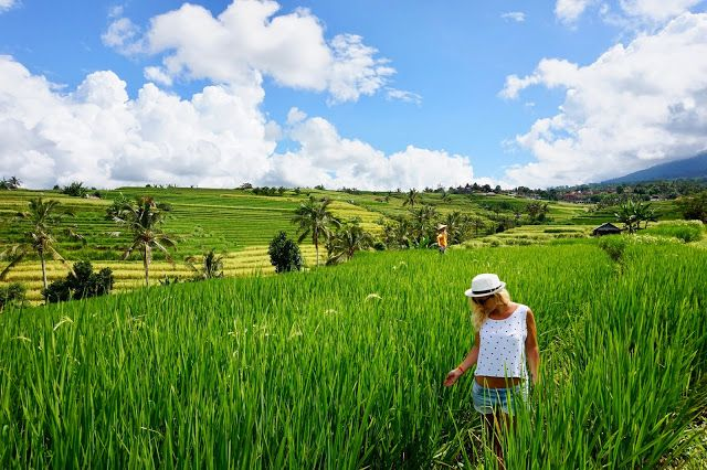 Bali - The Land of a Thousand Gods