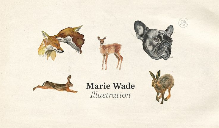 Little Lot | Watercolours from Marie Wade Illustration