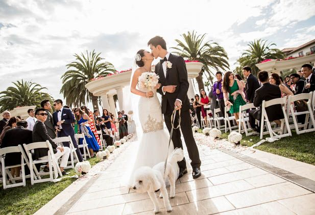 Walking down the aisle with their pooch! SO cute.